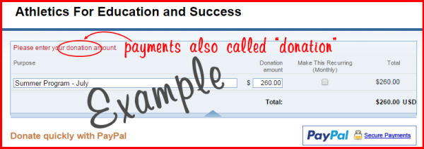 AFES PayPal payment and donation example screen